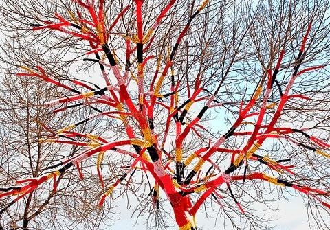Street-tree-2