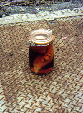 Thing_in_a_jar