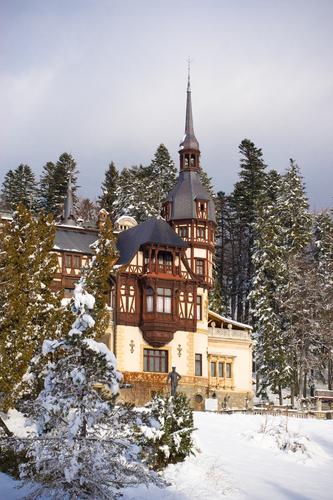 Snow-around-pelesh-castle-roml178