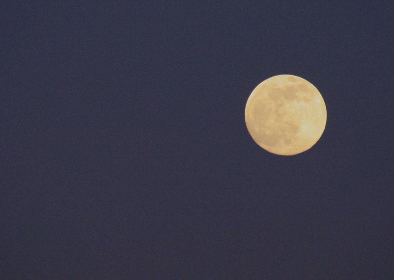 Blue Moon 2009