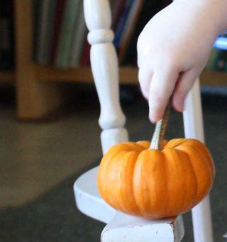 Pumpkinhand