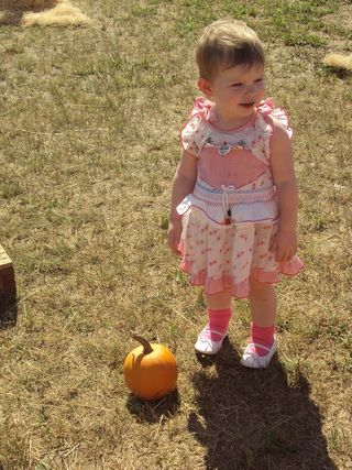 ThePumpkinPatch
