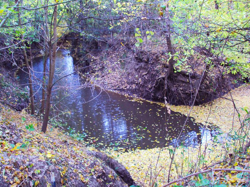 AutumnTurkeyCreek2