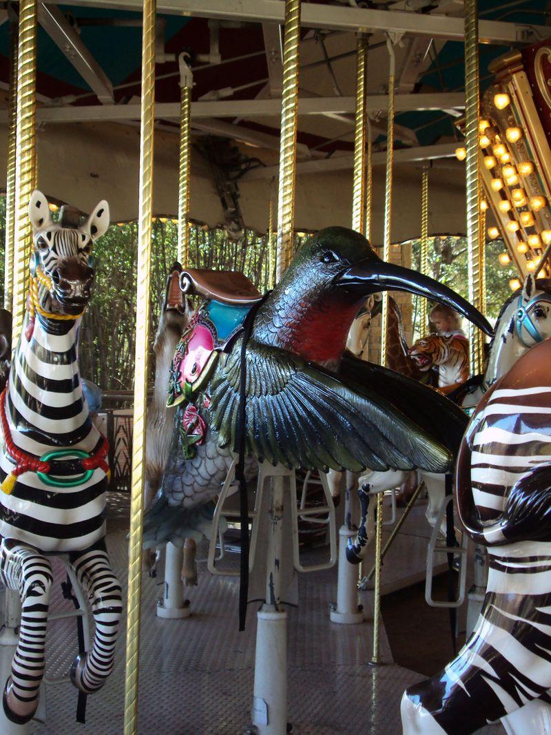 ZooCarouselHummingbird