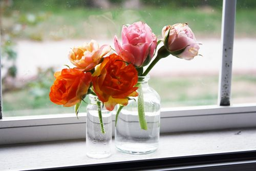 Spring2011Roses1