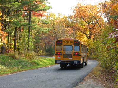 School-bus-fall