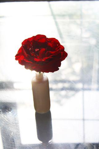 RoseMarch