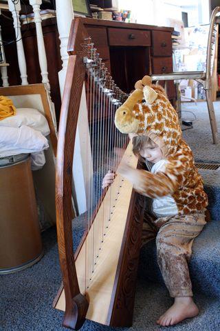 Giraffe Harp 2