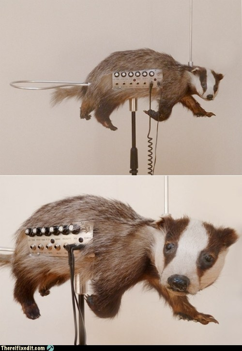 White-trash-repairs-there-i-fixed-it-taxidermied-badger-theremin (1)
