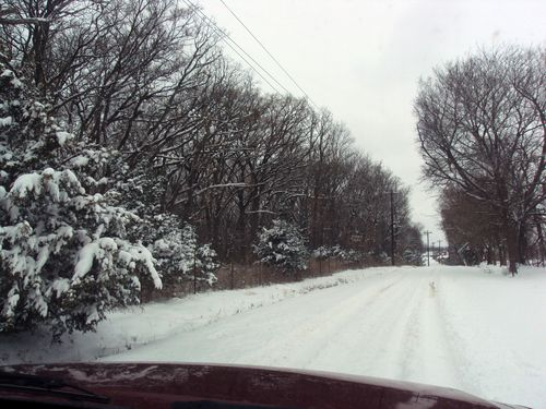 JanuarySnowDrive-2011