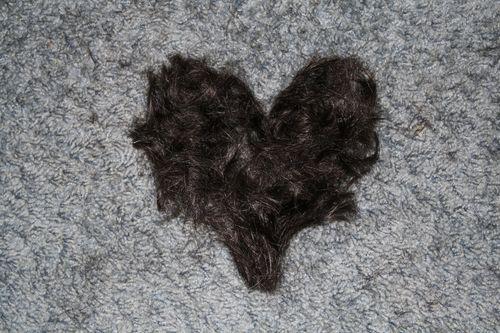 HairHeart