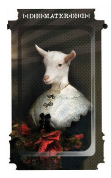 Ibride-el-querido-ewe-tray