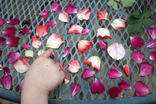 RosesPoint