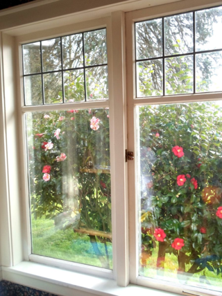 FarmhouseWindows