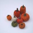 EightPumpkins1