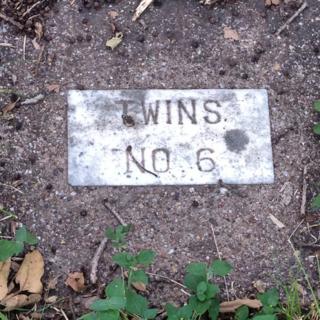 03-tui-snider-cemetery
