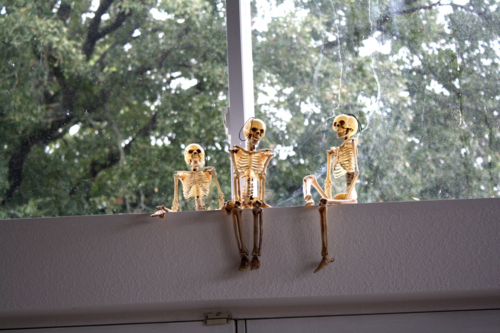 PartySkeletonsOverDoor