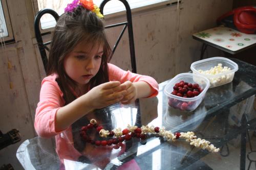 PiperPopcornCranberries