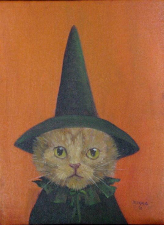 Orange Catwitch