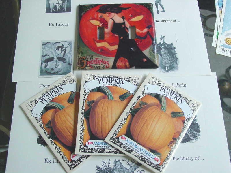 Fall_switch_plate_pumpkin