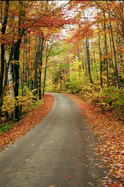 A_vermont_road
