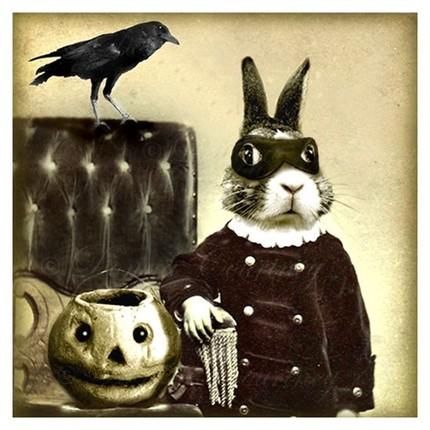 Bandito_bunny